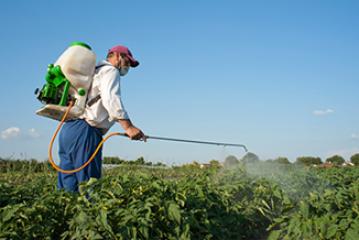 Curso carné plaguicidas uso fitosanitario – cualificado