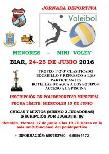 Jornada Deportiva voley 2016 _1_