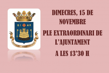 Pleno extraordinario del Ayuntamiento de Biar.