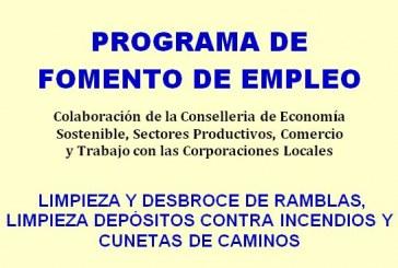 EMERGE. Programa d'ocupació en l'àmbit forestal