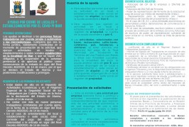 Bases d'ajudes per serveis locals o establiments o sedes socials a Biar