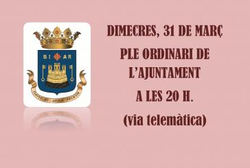 Pleno ordinario del Ayuntamiento de Biar