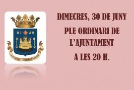 Ple ordinari de l'Ajuntament de Biar
